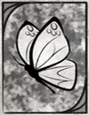 butterflywhite.png